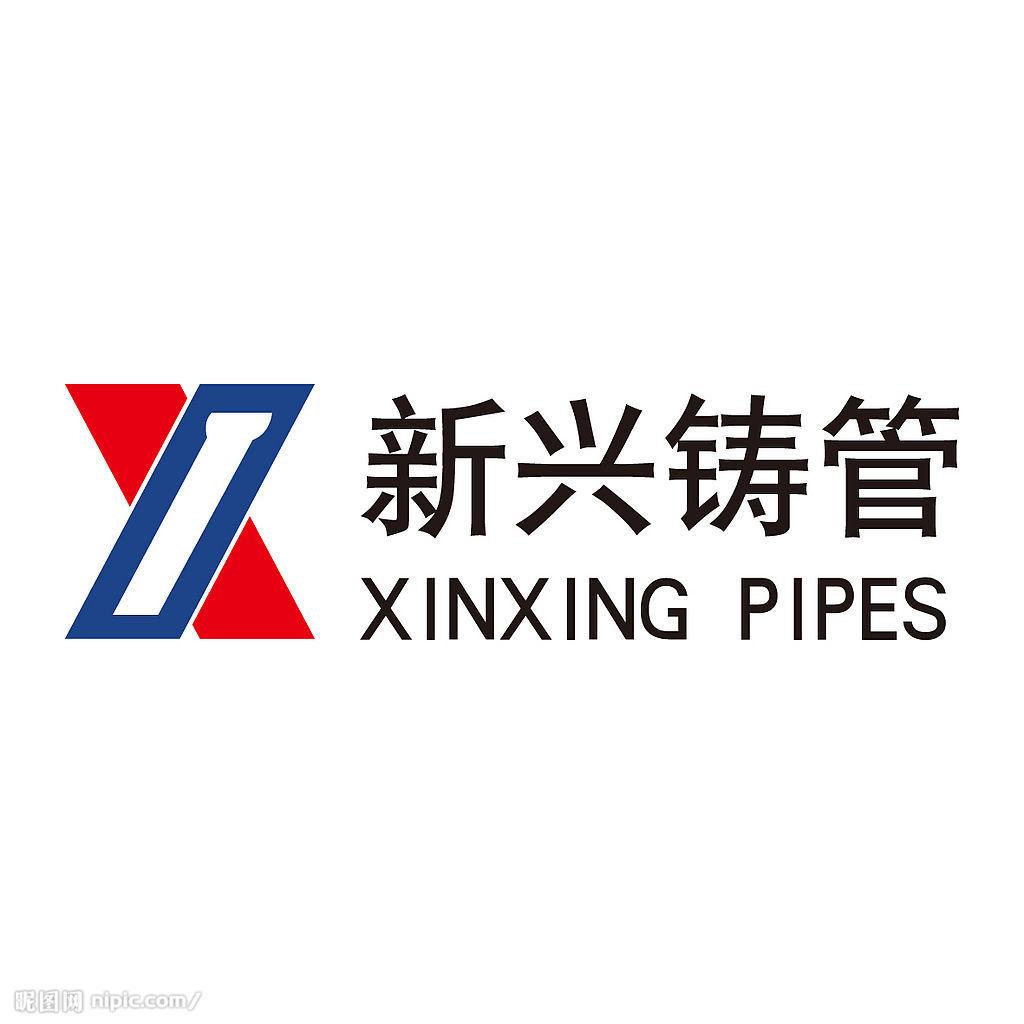广东新兴铸管有限公司